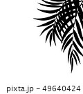 Beautifil Palm Tree Leaf  Silhouette Background Vector Illustration 49640424