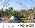 愛知県 名古屋城 桜 49640425