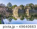 愛知県 名古屋城 桜 49640663