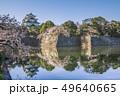 愛知県 名古屋城 桜 49640665