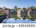 愛知県 名古屋城 桜 49640666