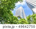 高層ビル ビル 新緑の写真 49642750
