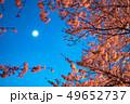 桜と月 49652737