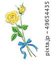 イラスト3:黄色のバラ 49654435