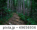 熊野古道中辺路の道 49656936