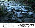 熊野古道大門坂 49657277