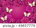 花 蝶 カードのイラスト 49657779