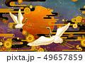 菊科 キク 菊のイラスト 49657859
