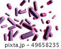 大腸菌の透過素材(コンピューターグラフィック) 49658235