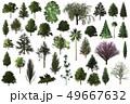 tree set 3d illustration on white background 49667632