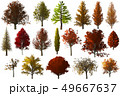 Fall autumn Tree foliage collection set isolated 49667637
