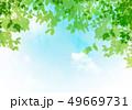 背景素材 新緑 初夏のイラスト 49669731