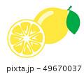 フルーツ 果物 果実のイラスト 49670037