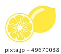 フルーツ 果物 果実のイラスト 49670038
