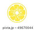 フルーツ 果物 果実のイラスト 49670044
