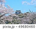 彦根城の桜 49680460