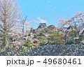彦根城の桜 49680461