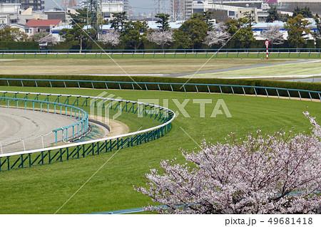 阪神競馬場 - 桜と芝内回りコース 49681418