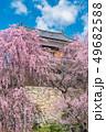 長野県上田市 上田城と桜 49682588