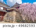 長野県上田市 上田城と桜 49682593