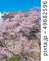 長野県上田市 上田城と桜 49682596