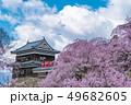 長野県上田市 上田城と桜 49682605
