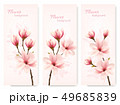 Set of nature flower magnolia banners. Vector. 49685839