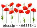 Beautiful nature poppy background. Vector. 49685841