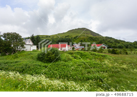 Beautiful scandinavian landscape with meadows, 49688715