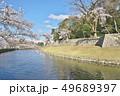 彦根城の桜 49689397