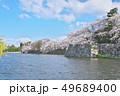 彦根城の桜 49689400