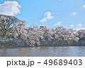 彦根城の桜 49689403