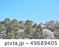 彦根城の桜 49689405