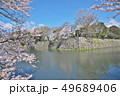 彦根城の桜 49689406