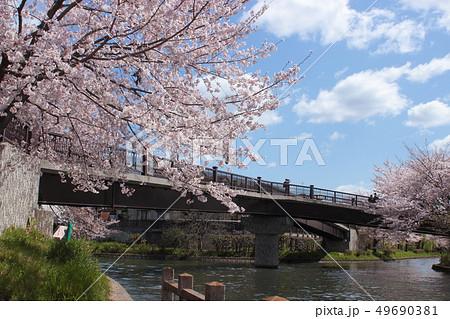 京都 春の伏見であい橋 49690381