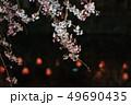 三嶋大社 枝垂れ桜 Mishima Taisha Night cherry blossom 49690435
