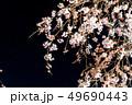 三嶋大社 枝垂れ桜 Mishima Taisha Night cherry blossom 49690443