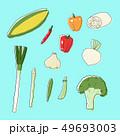 野菜イラスト2 ベタ塗 49693003