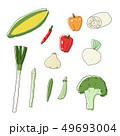 野菜イラスト2 ベタ塗素材 49693004