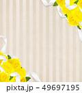 背景-バラ-黄色-父の日-ベージュ-ストライプ 49697195
