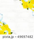 背景-バラ-黄色-父の日-白壁 49697482