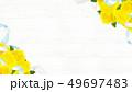 背景-バラ-黄色-父の日-白壁 49697483