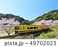 春 桜 ソメイヨシノの写真 49702023
