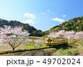 春 桜 ソメイヨシノの写真 49702024