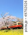 春 桜 菜の花の写真 49702026