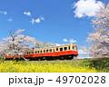 春 桜 ソメイヨシノの写真 49702028
