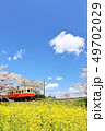 春 桜 電車の写真 49702029