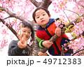 木登りする2人の子供兄弟と春の満開の桜の背景 49712383