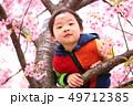 木登りする子供と春の満開の桜の背景 49712385