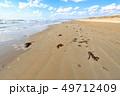 海岸 海 砂丘の写真 49712409